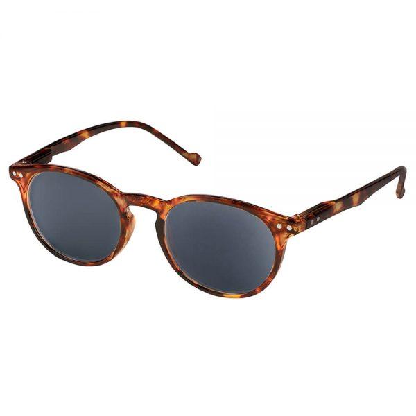 Display Surtido Gafas de Sol Marrones (6)